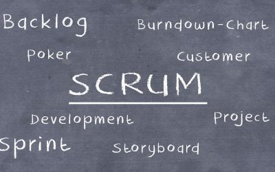 Agiles Projekt- und Produktmanagement