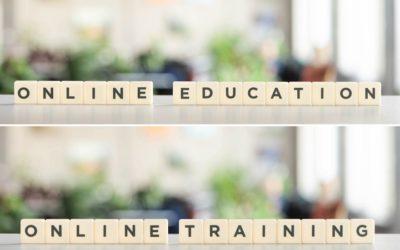 Erfahrungsbericht Online-Training