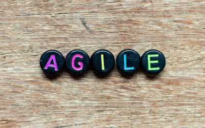 Is more agility always the right solution?