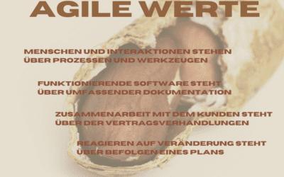 Agility in the Nutshell – Agile Werte
