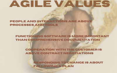 Agility in the Nutshell – Agile Values