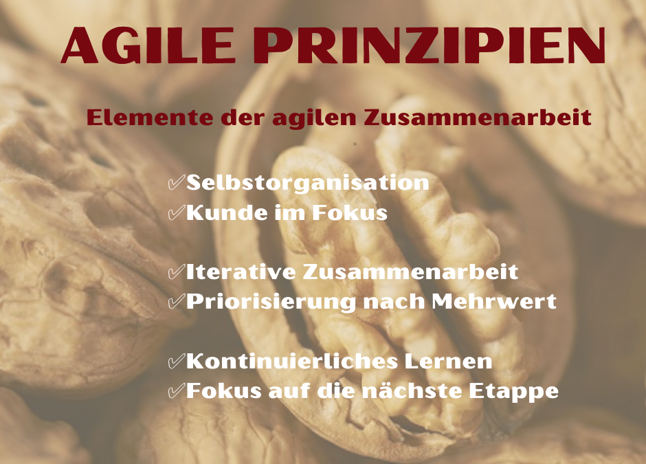 Agility in the Nutshell – Agile Prinzipien