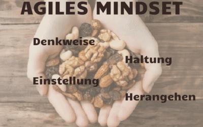 Agility in the Nutshell III – Agiles Mindset