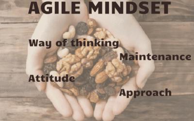 Agility in the Nutshell III – Agile Mindset