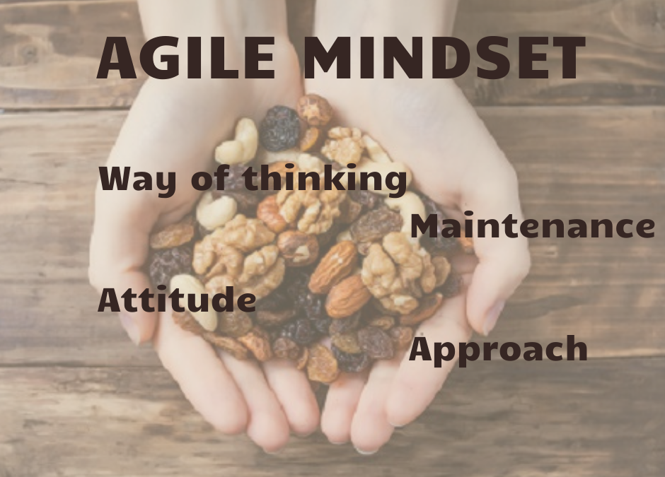 Agility in the Nutshell III – Agile Mindset
